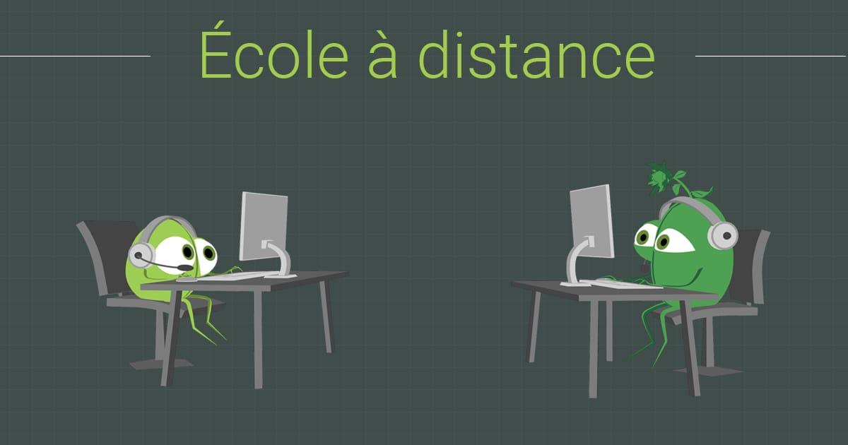 Ecole a distance Creative Seeds